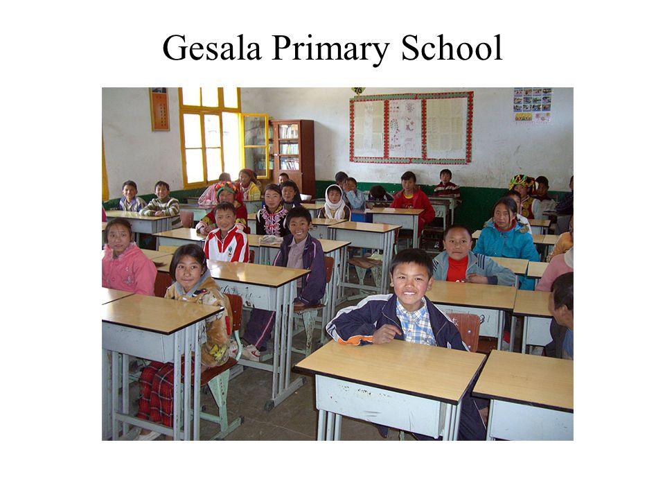 Gesala Primary School