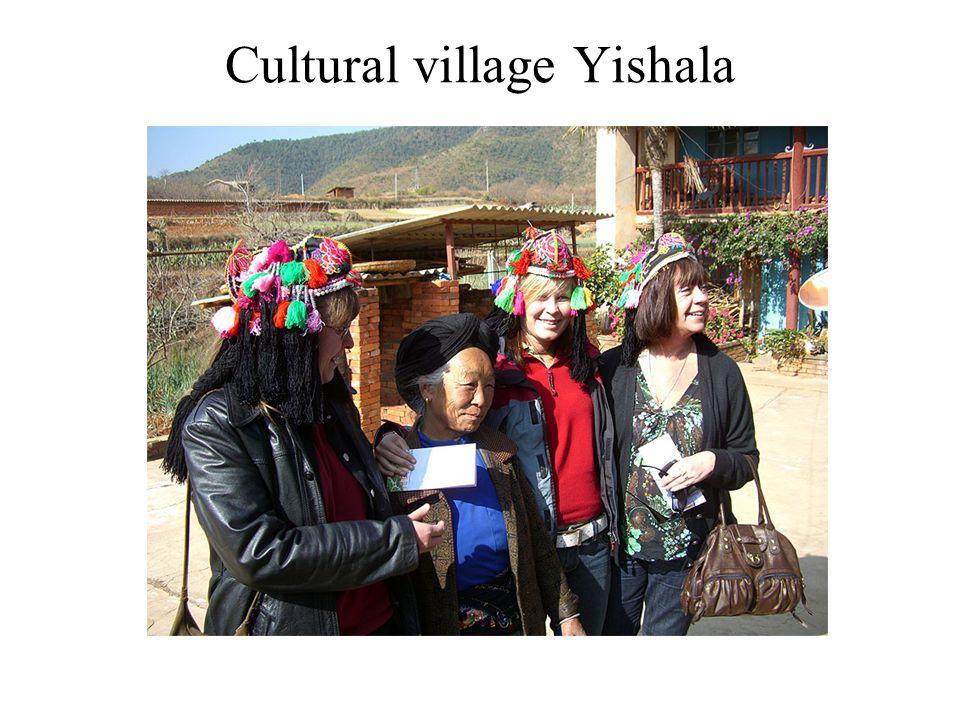 Cultural village Yishala