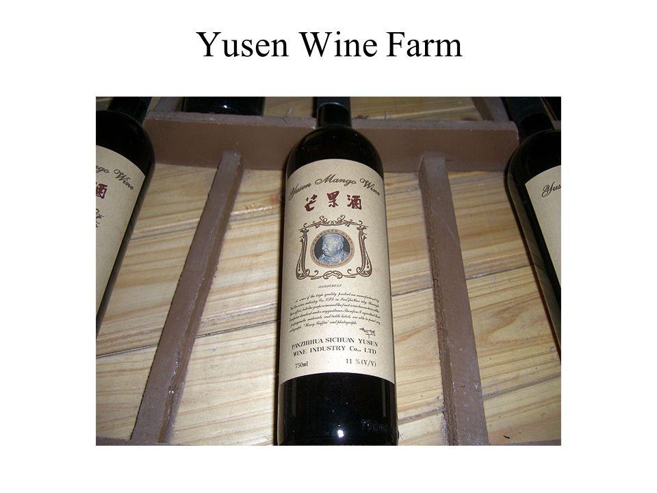 Yusen Wine Farm