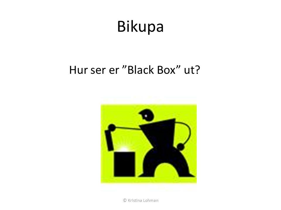 Bikupa Hur ser er Black Box ut © Kristina Lohman