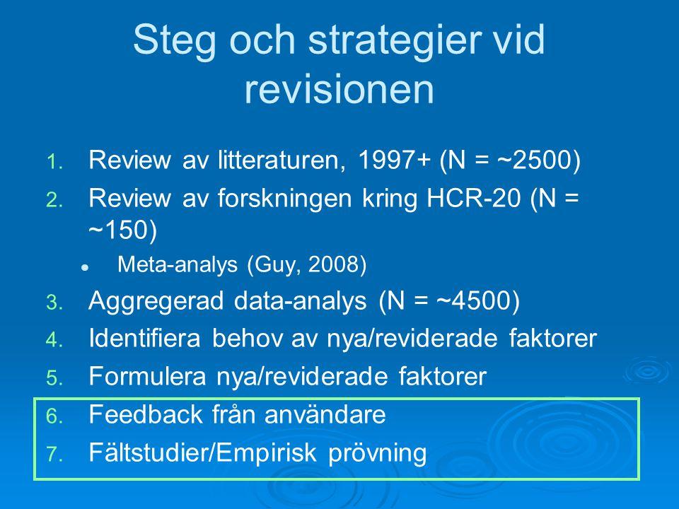 Steg och strategier vid revisionen