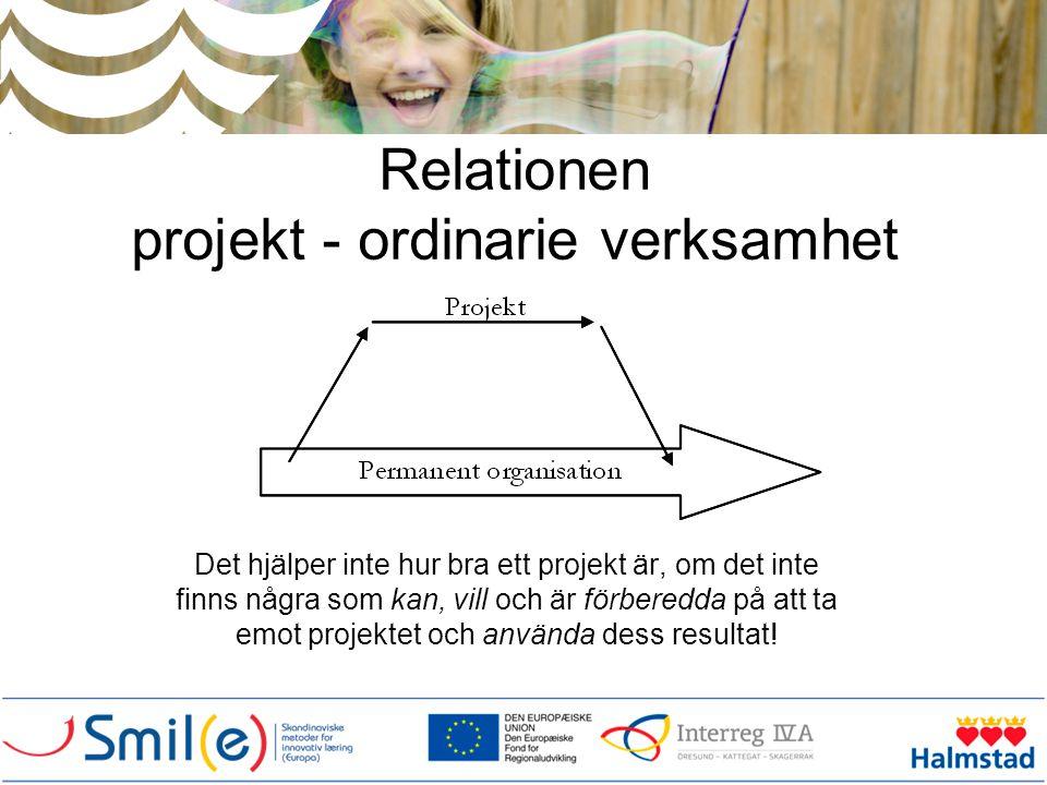 Relationen projekt - ordinarie verksamhet
