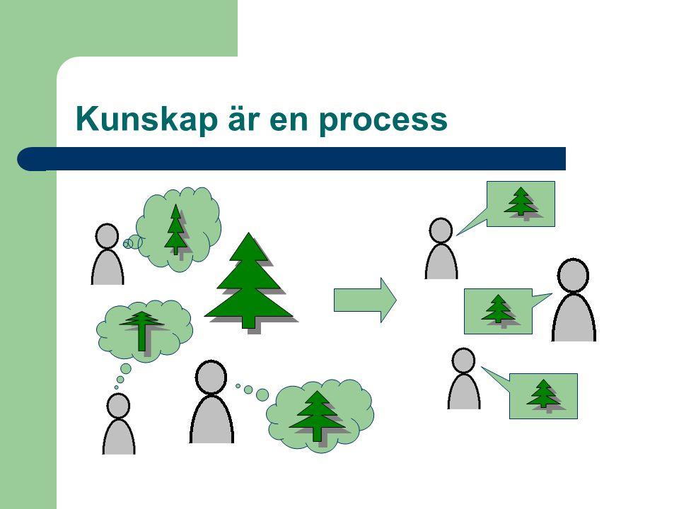 Kunskap är en process
