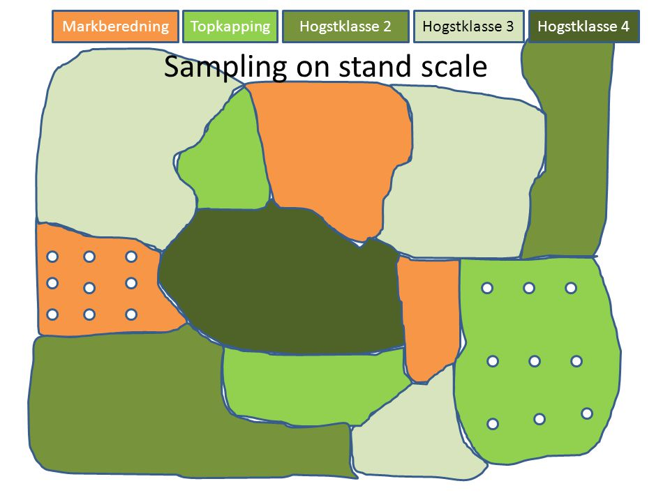 Sampling on stand scale