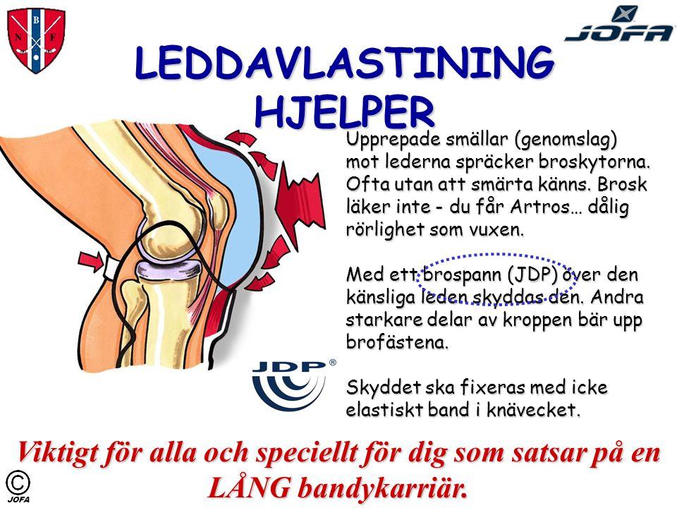 LEDDAVLASTINING HJELPER