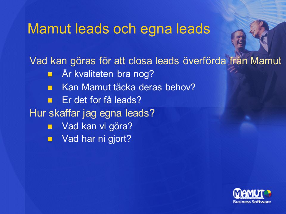 Mamut leads och egna leads