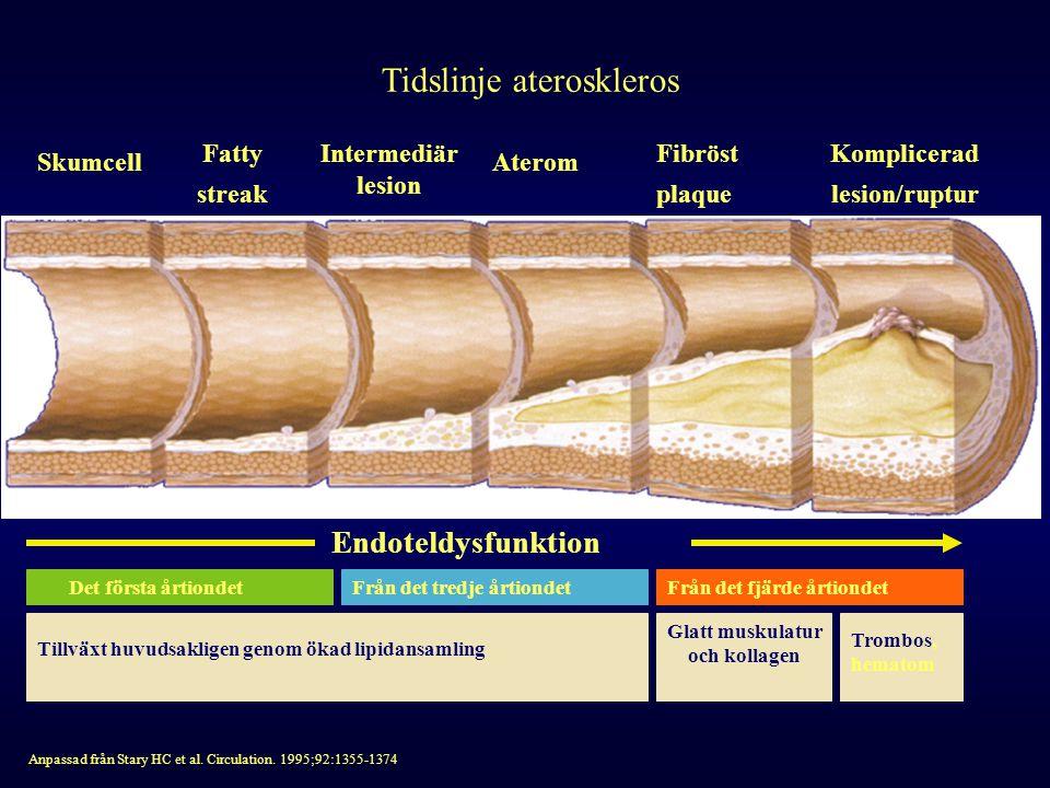 Tidslinje ateroskleros