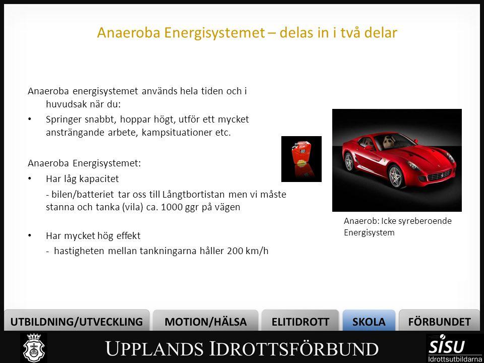 Anaeroba Energisystemet – delas in i två delar