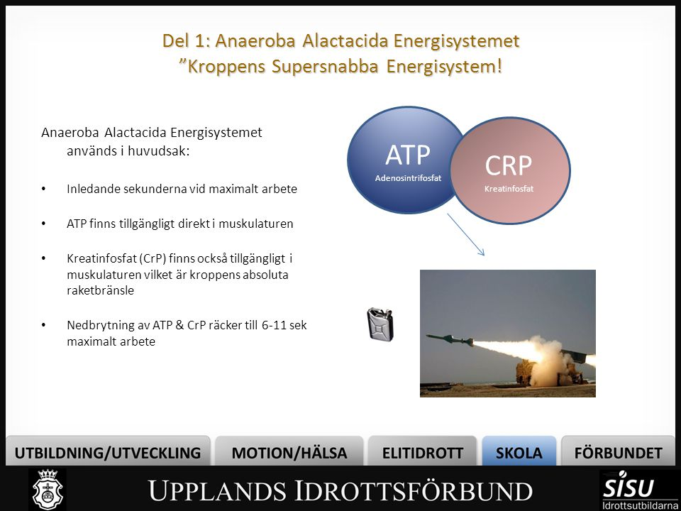 Del 1: Anaeroba Alactacida Energisystemet Kroppens Supersnabba Energisystem!