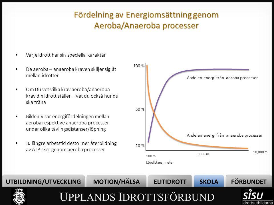 Fördelning av Energiomsättning genom Aeroba/Anaeroba processer