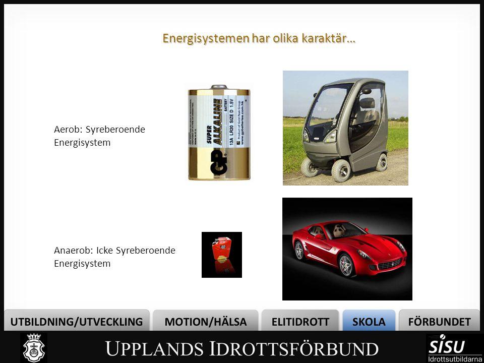 Energisystemen har olika karaktär…