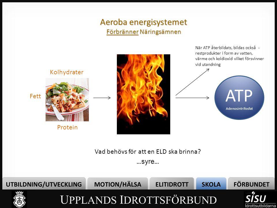 Aeroba energisystemet Förbränner Näringsämnen