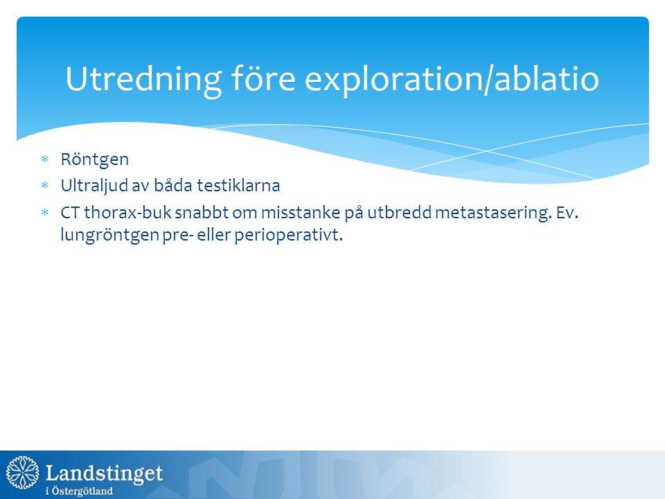 Utredning före exploration/ablatio