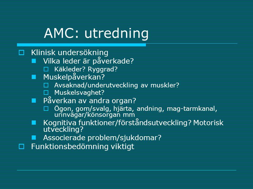 AMC: utredning Klinisk undersökning Funktionsbedömning viktigt