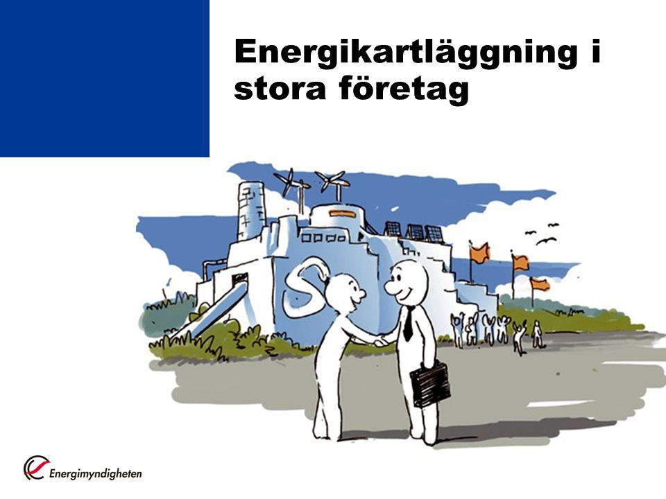 Energikartläggning i stora företag
