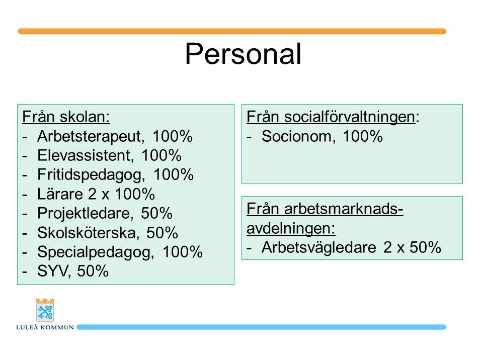 Personal Från skolan: Arbetsterapeut, 100% Elevassistent, 100%