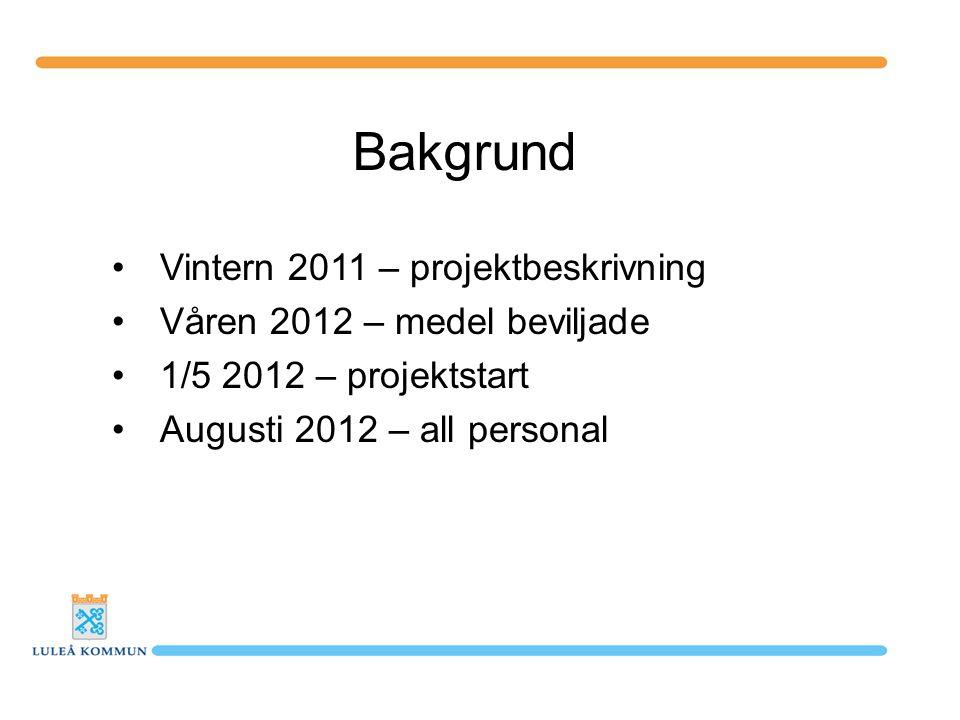 Bakgrund Vintern 2011 – projektbeskrivning
