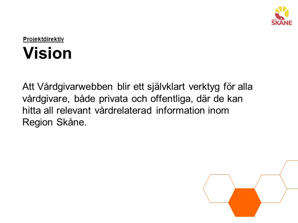 Projektdirektiv Vision