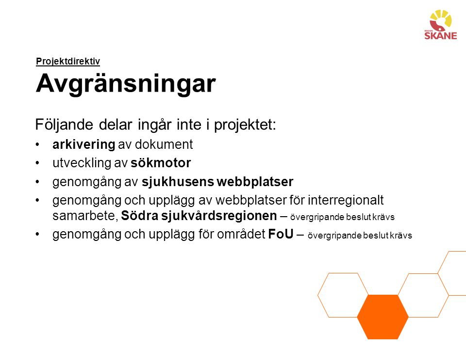 Projektdirektiv Avgränsningar