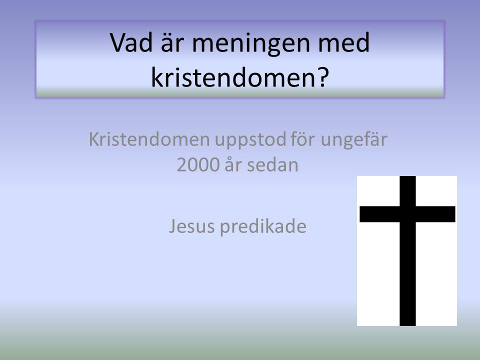 Vad är meningen med kristendomen