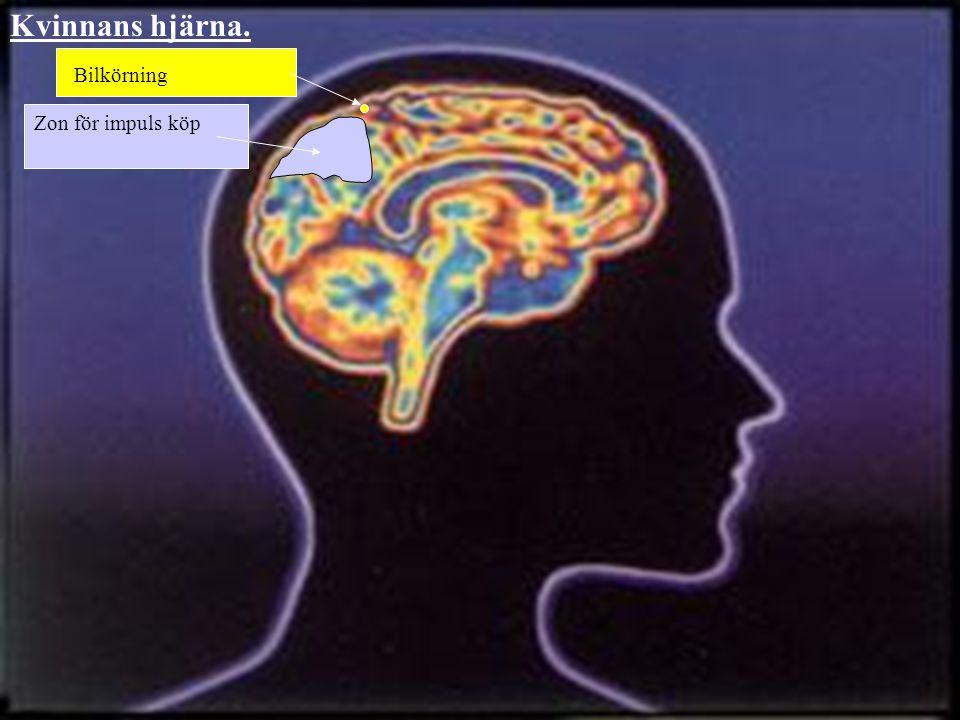 Kvinnans hjärna. Bilkörning Zon för impuls köp
