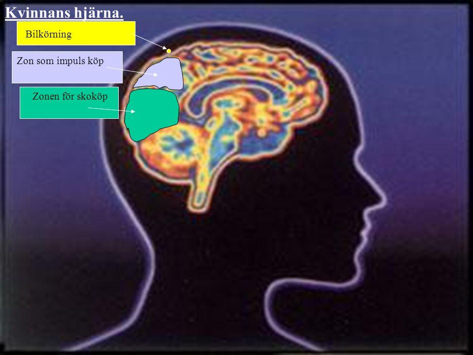 Kvinnans hjärna. Bilkörning Zon som impuls köp Zonen för skoköp