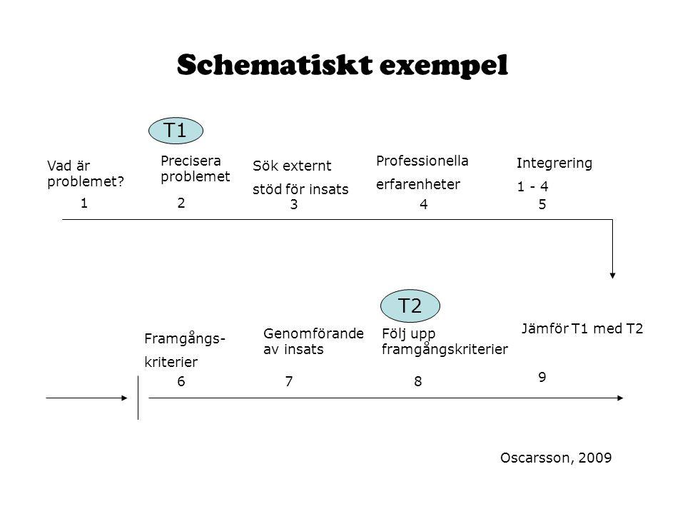 Schematiskt exempel T1 T2 Precisera problemet Professionella