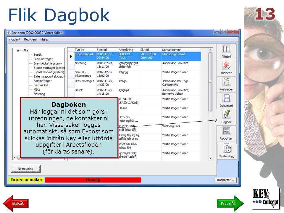 Flik Dagbok 13. Dagboken.