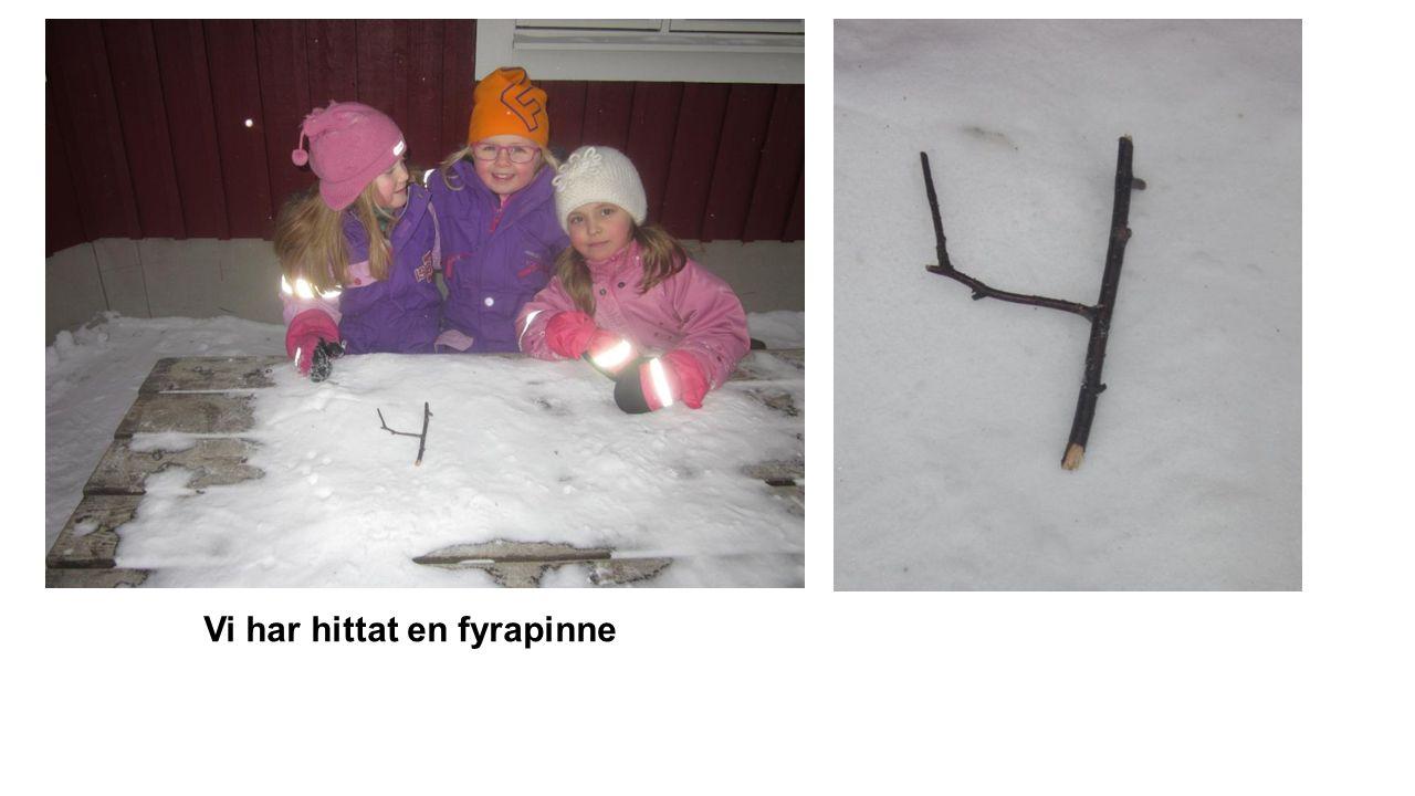 Vi har hittat en fyrapinne