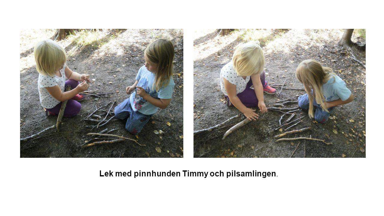 Lek med pinnhunden Timmy och pilsamlingen.