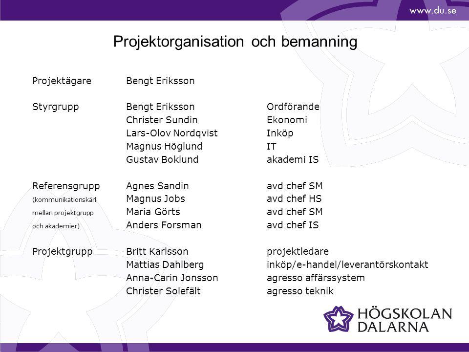Projektorganisation och bemanning