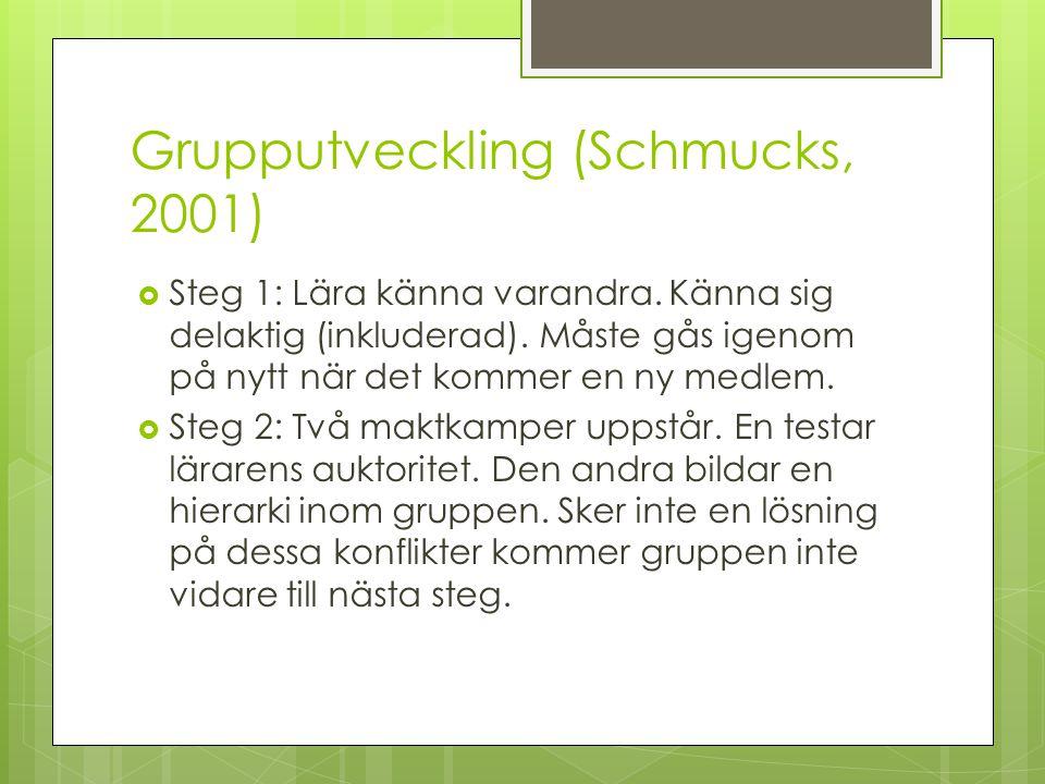 Grupputveckling (Schmucks, 2001)