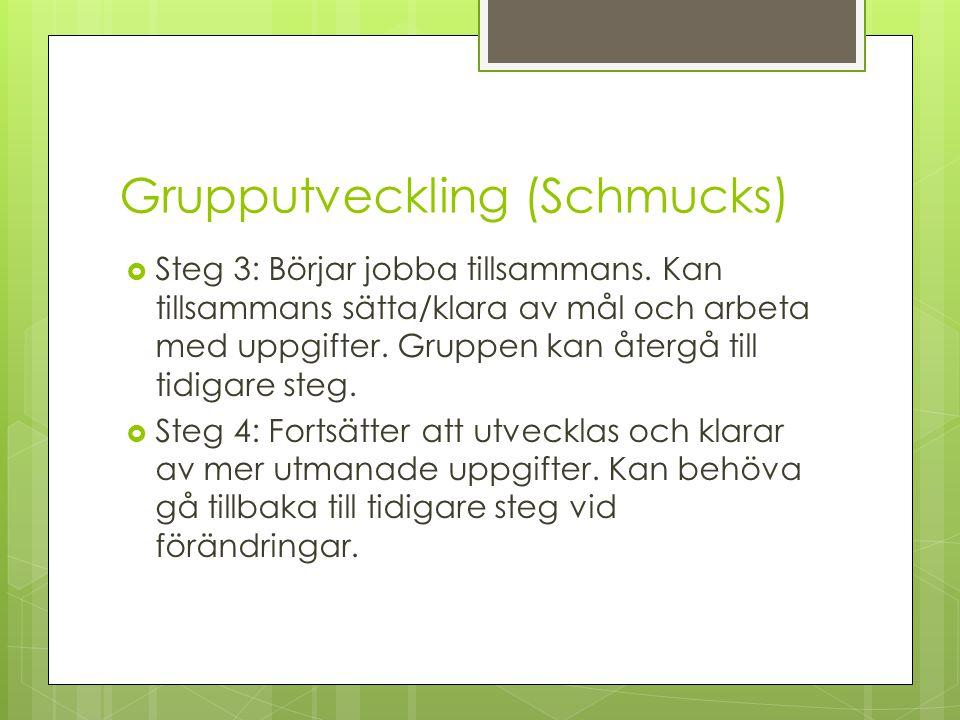 Grupputveckling (Schmucks)