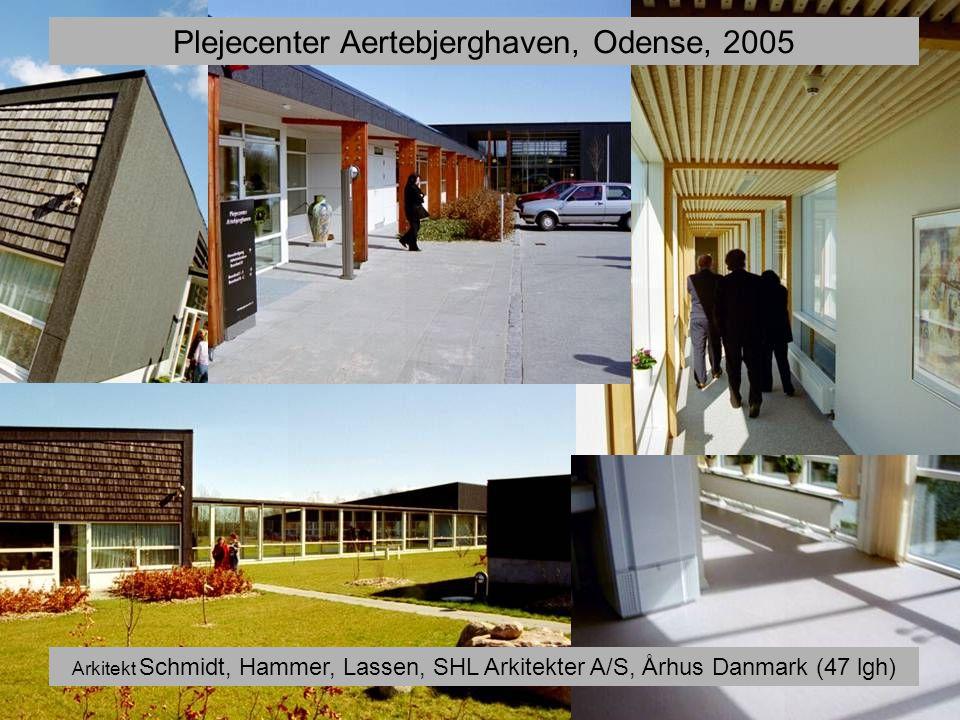 Plejecenter Aertebjerghaven, Odense, 2005
