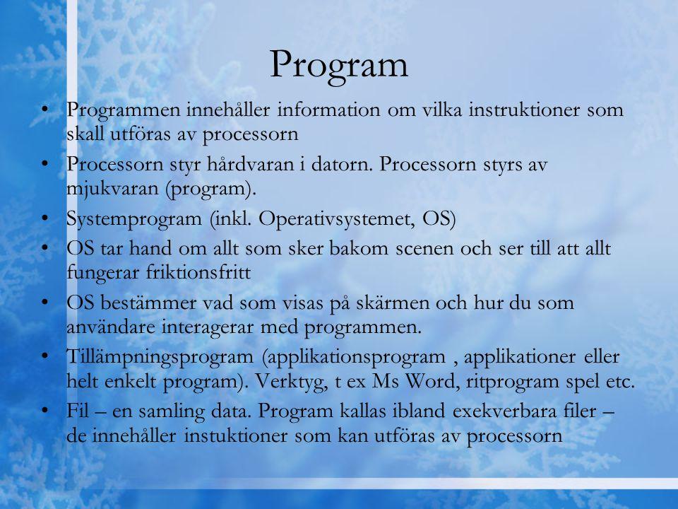 Program Programmen innehåller information om vilka instruktioner som skall utföras av processorn.
