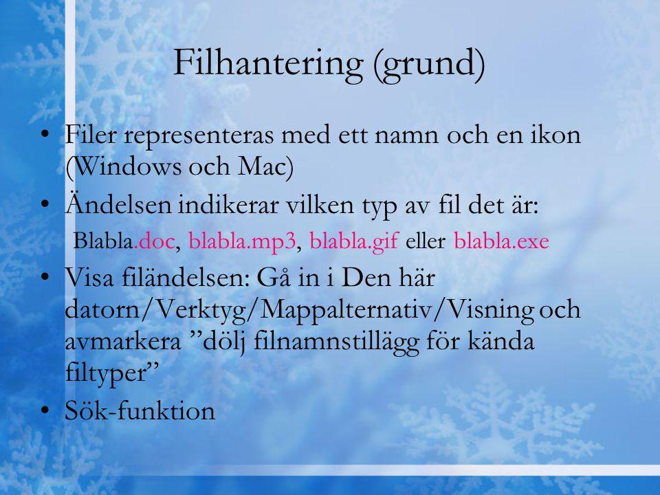Filhantering (grund) Filer representeras med ett namn och en ikon (Windows och Mac) Ändelsen indikerar vilken typ av fil det är: