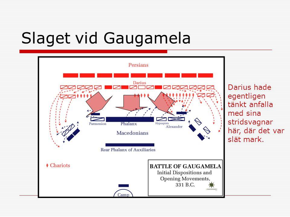 Slaget vid Gaugamela Darius hade egentligen tänkt anfalla med sina stridsvagnar här, där det var slät mark.