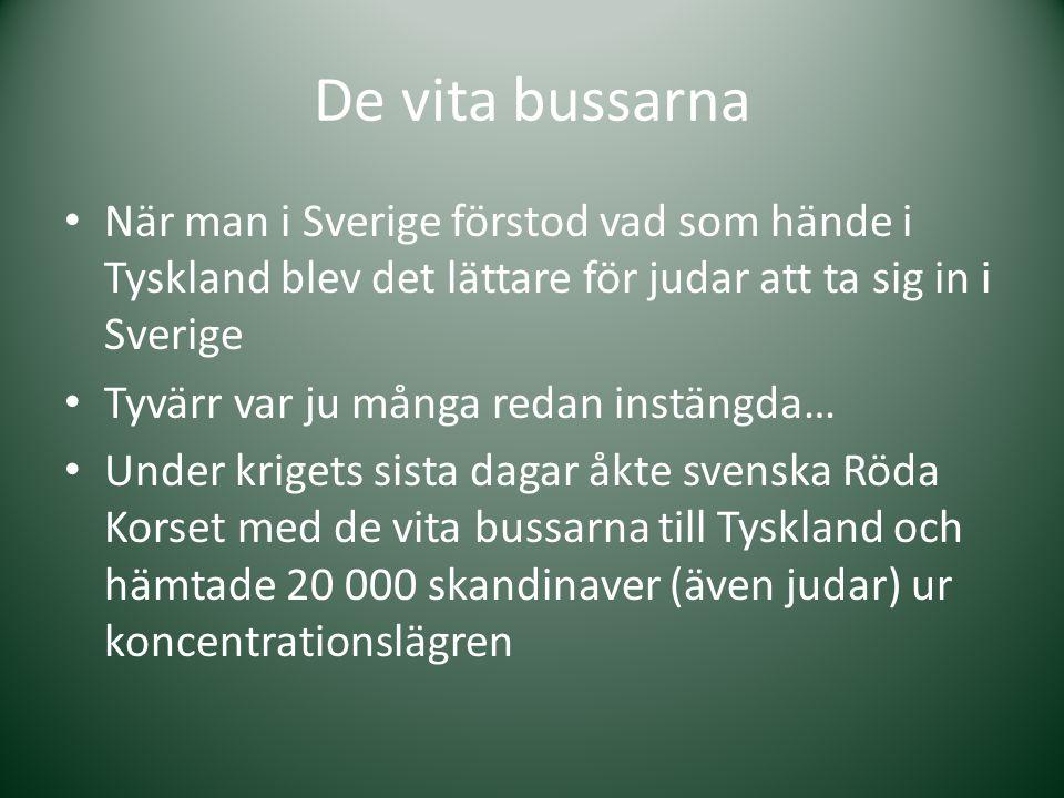 De vita bussarna När man i Sverige förstod vad som hände i Tyskland blev det lättare för judar att ta sig in i Sverige.