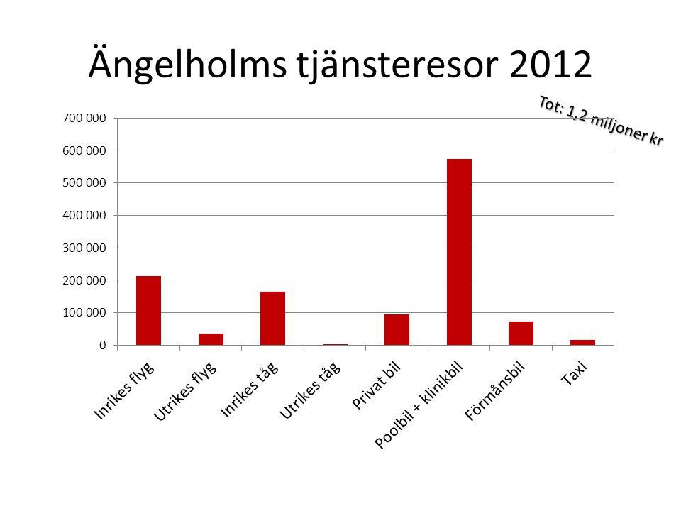 Ängelholms tjänsteresor 2012