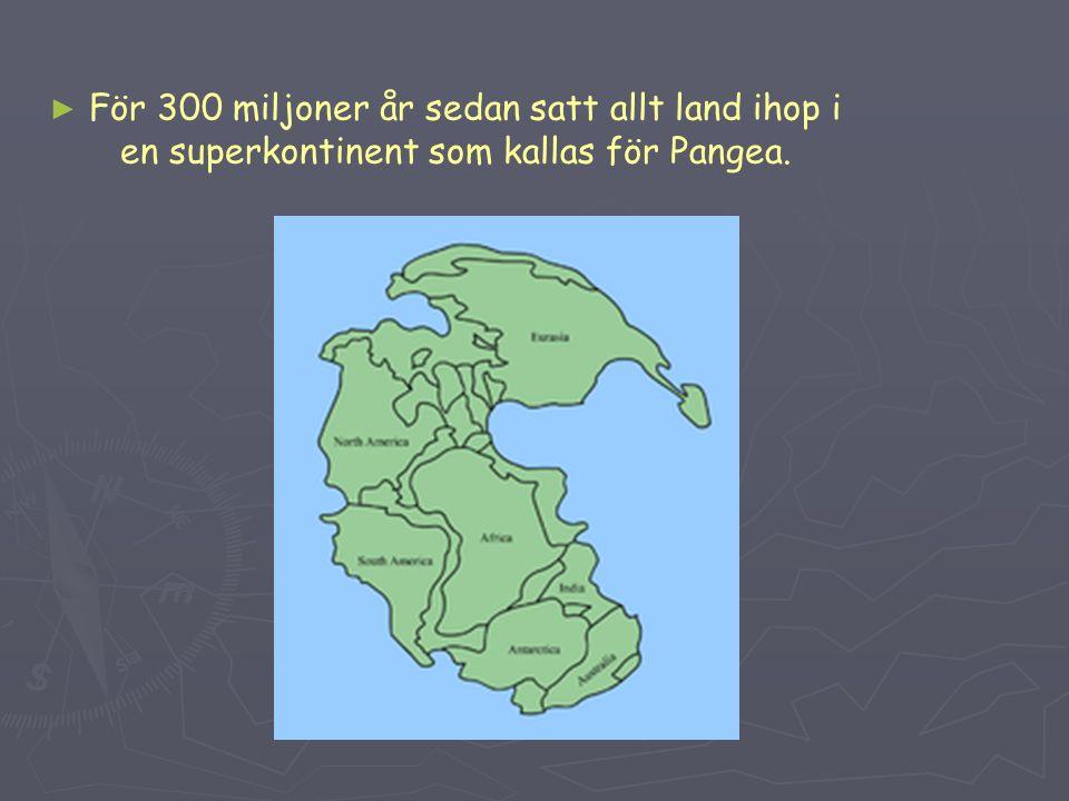 För 300 miljoner år sedan satt allt land ihop i en superkontinent som kallas för Pangea.
