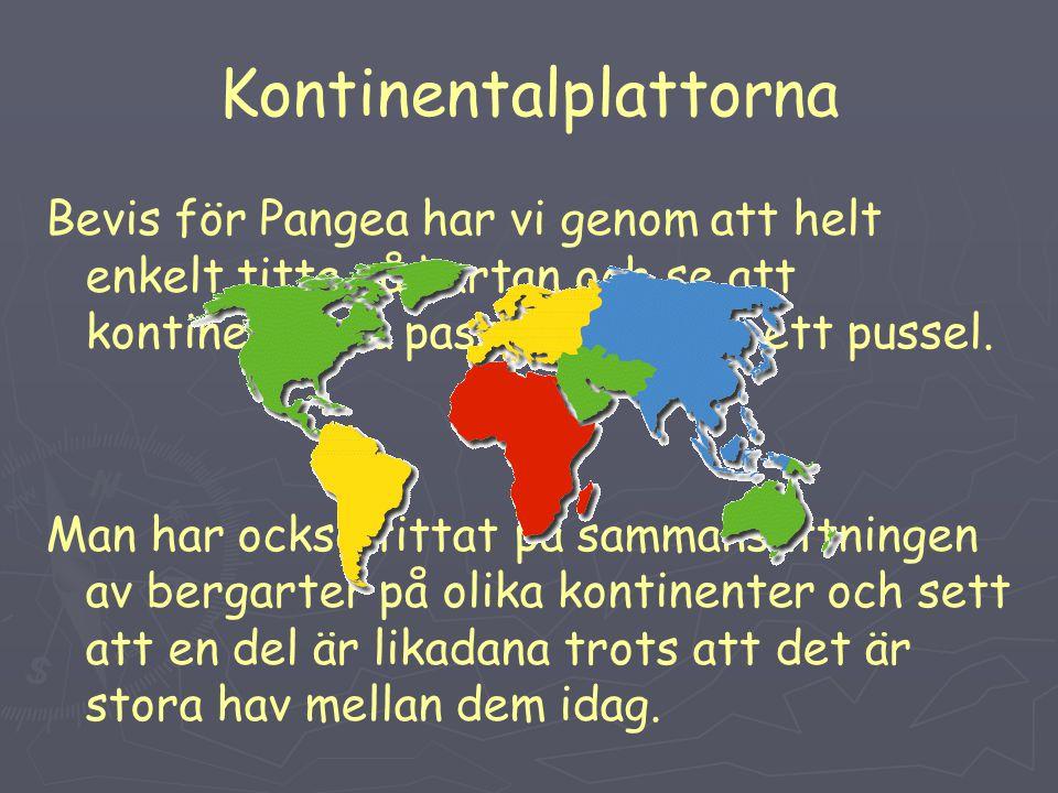 Kontinentalplattorna