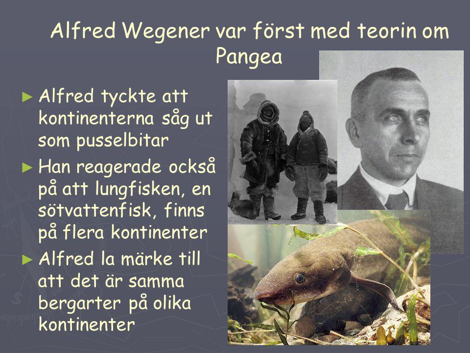 Alfred Wegener var först med teorin om Pangea