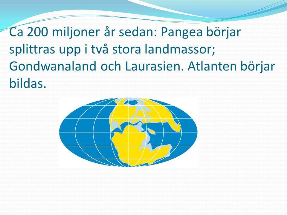Ca 200 miljoner år sedan: Pangea börjar splittras upp i två stora landmassor; Gondwanaland och Laurasien.