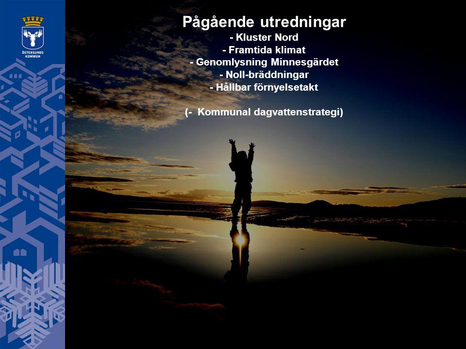 Pågående utredningar - Kluster Nord - Framtida klimat - Genomlysning Minnesgärdet - Noll-bräddningar - Hållbar förnyelsetakt (- Kommunal dagvattenstrategi)