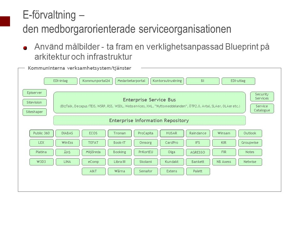 E-förvaltning – den medborgarorienterade serviceorganisationen