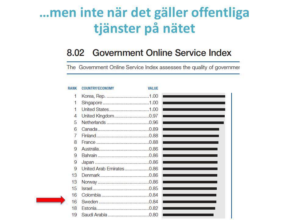 …men inte när det gäller offentliga tjänster på nätet