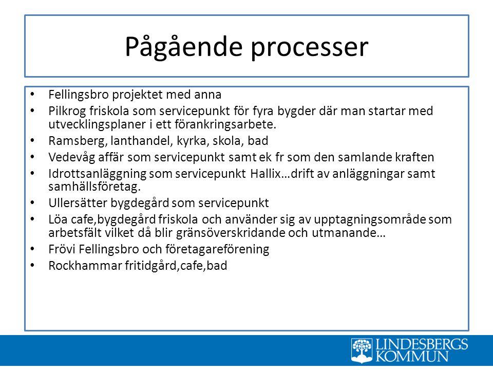 Pågående processer Fellingsbro projektet med anna