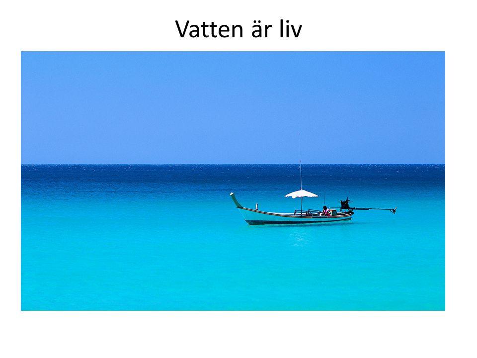 Vatten är liv