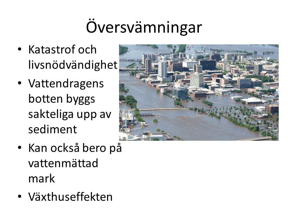 Översvämningar Katastrof och livsnödvändighet
