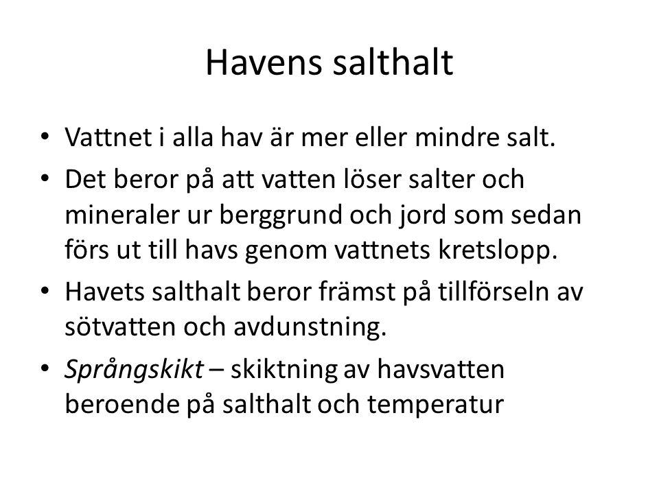 Havens salthalt Vattnet i alla hav är mer eller mindre salt.